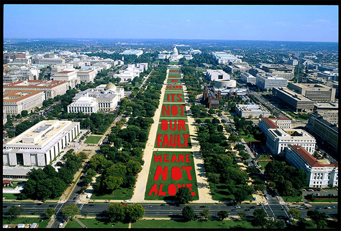 national mall quilt